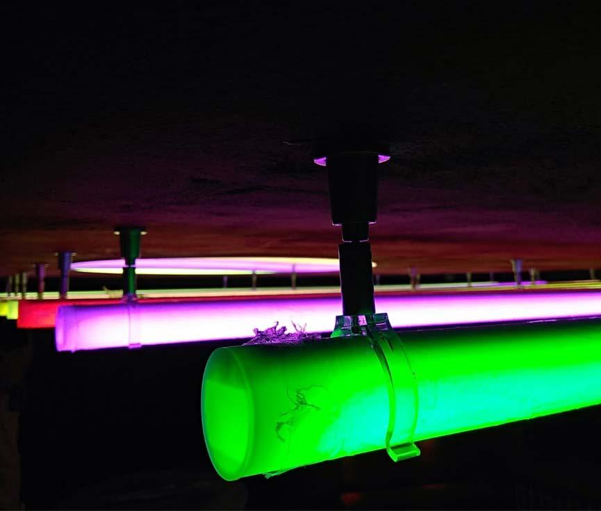 Sistema control iluminación personalizado Madrid